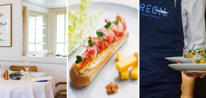 Our selection : Blue lobster